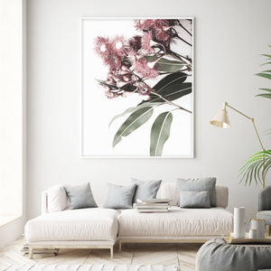 Eucalyptus in Bloom - Olive et Oriel | Shop Art Prints & Posters Online