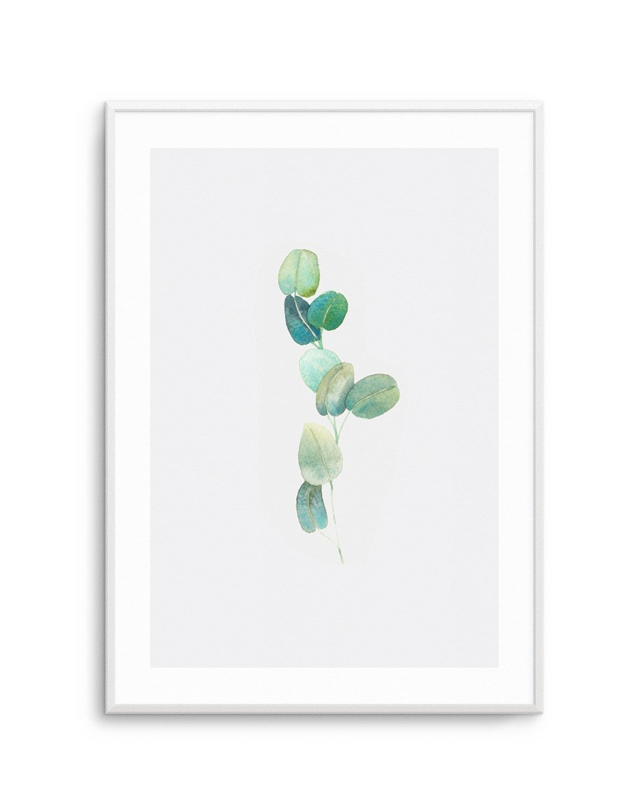 Eucalyptus In Watercolour - Olive et Oriel | Shop Art Prints & Posters Online