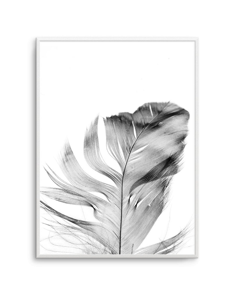 Feather | Grey - Olive et Oriel | Shop Art Prints & Posters Online