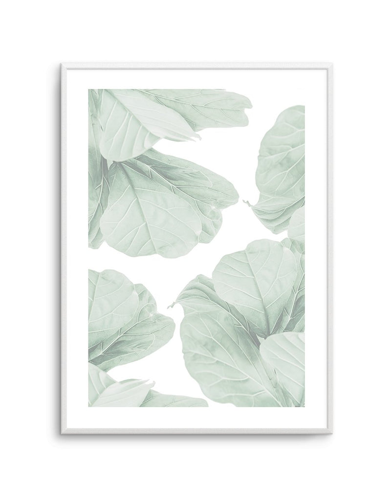 Fig Leaves I - Olive et Oriel | Shop Art Prints & Posters Online
