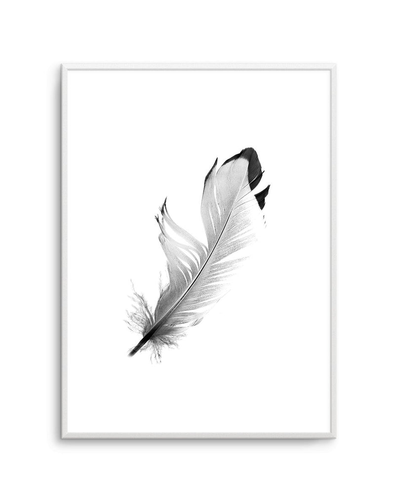 Floating Feather - Olive et Oriel | Shop Art Prints & Posters Online