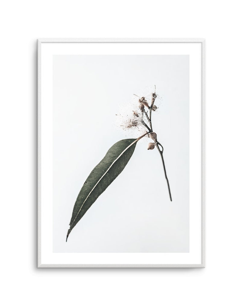 Floating Gum - Olive et Oriel | Shop Art Prints & Posters Online