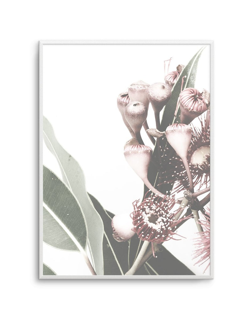 Flowering Gum No I - Olive et Oriel | Shop Art Prints & Posters Online