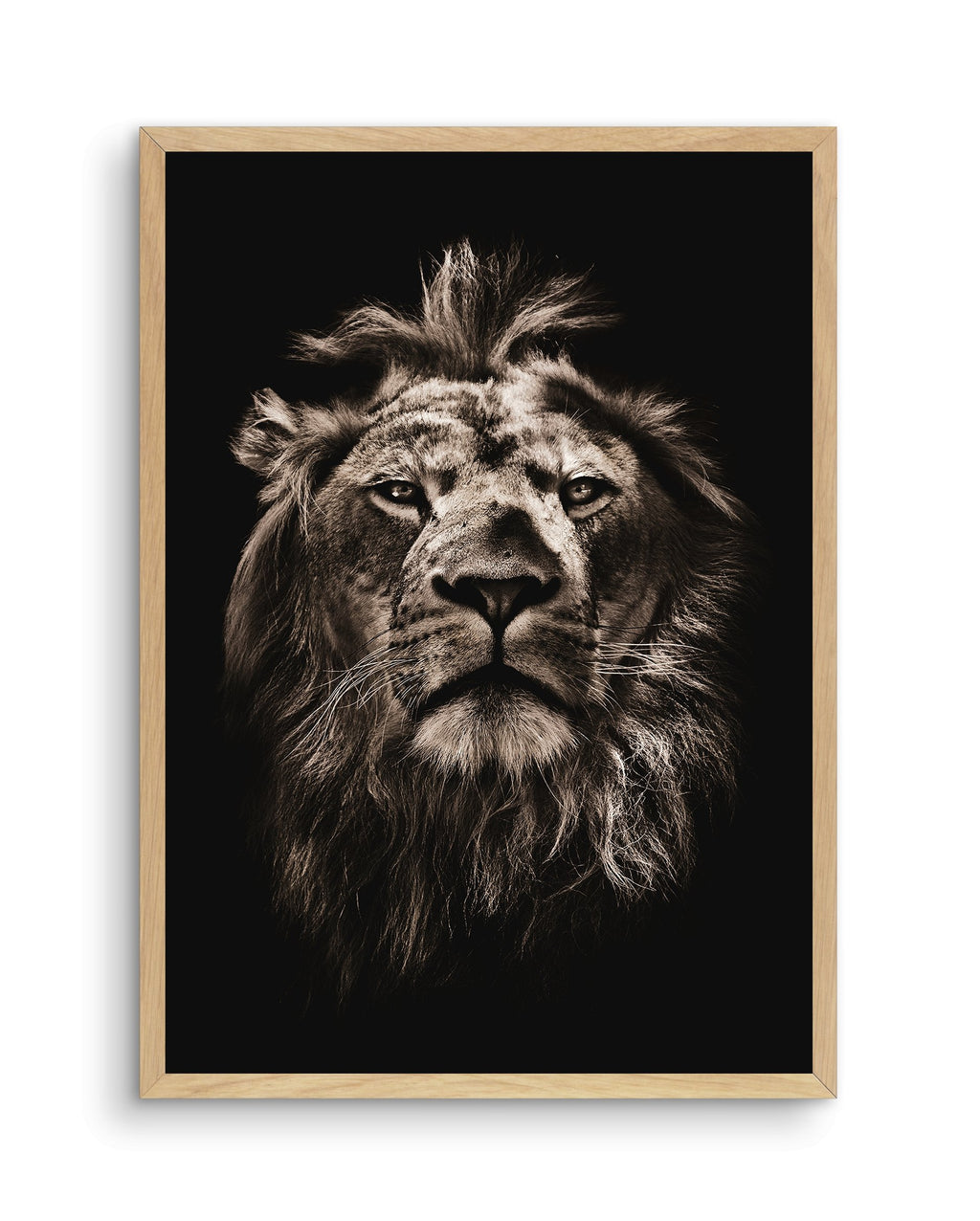 Golden Lion - Olive et Oriel | Shop Art Prints & Posters Online