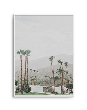 Grass Is Greener PT | Palm Springs - Olive et Oriel | Shop Art Prints & Posters Online