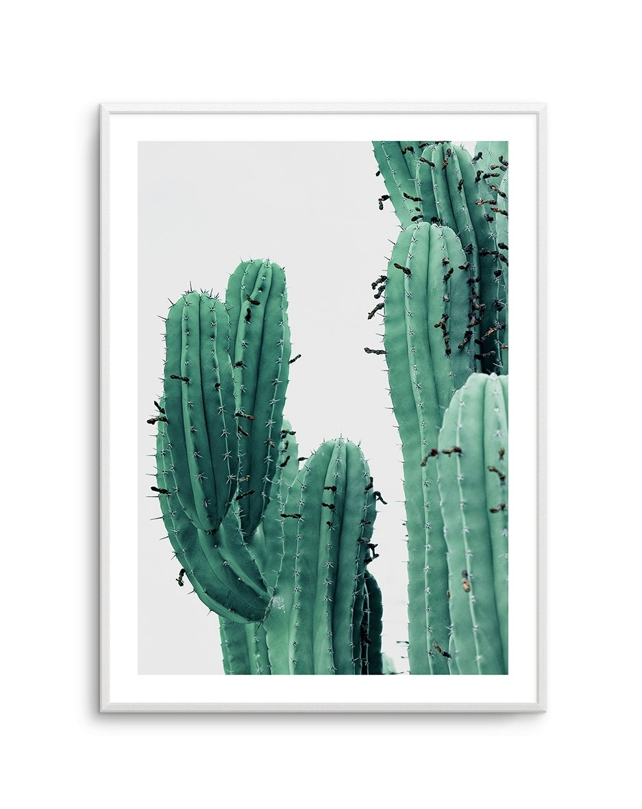 GREEN CACTUS NO 1 - Olive et Oriel | Shop Art Prints & Posters Online