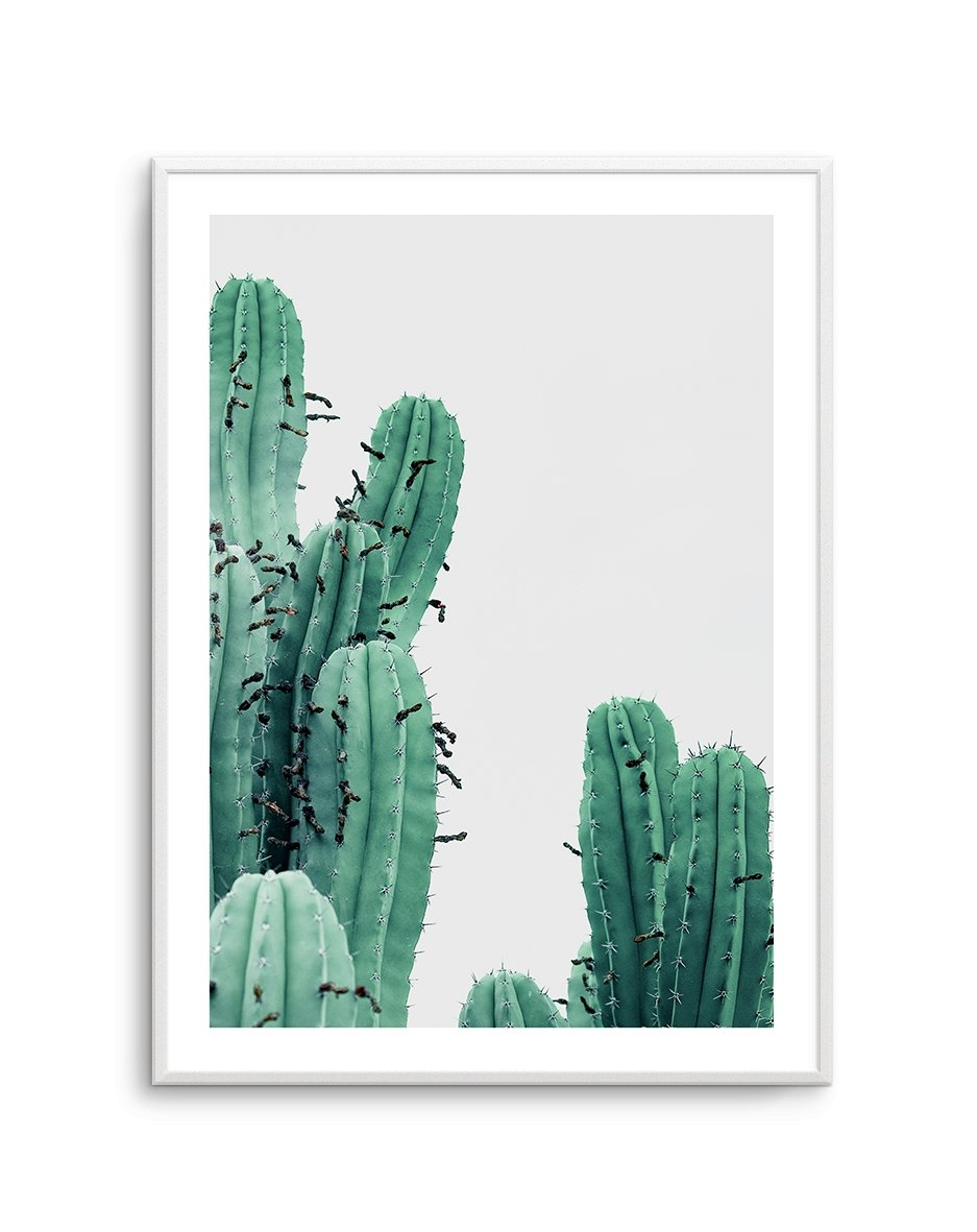 GREEN CACTUS NO 3 - Olive et Oriel | Shop Art Prints & Posters Online