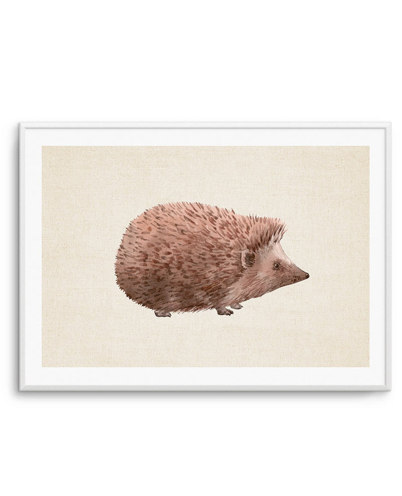Hedgehog on Linen II LS - Olive et Oriel