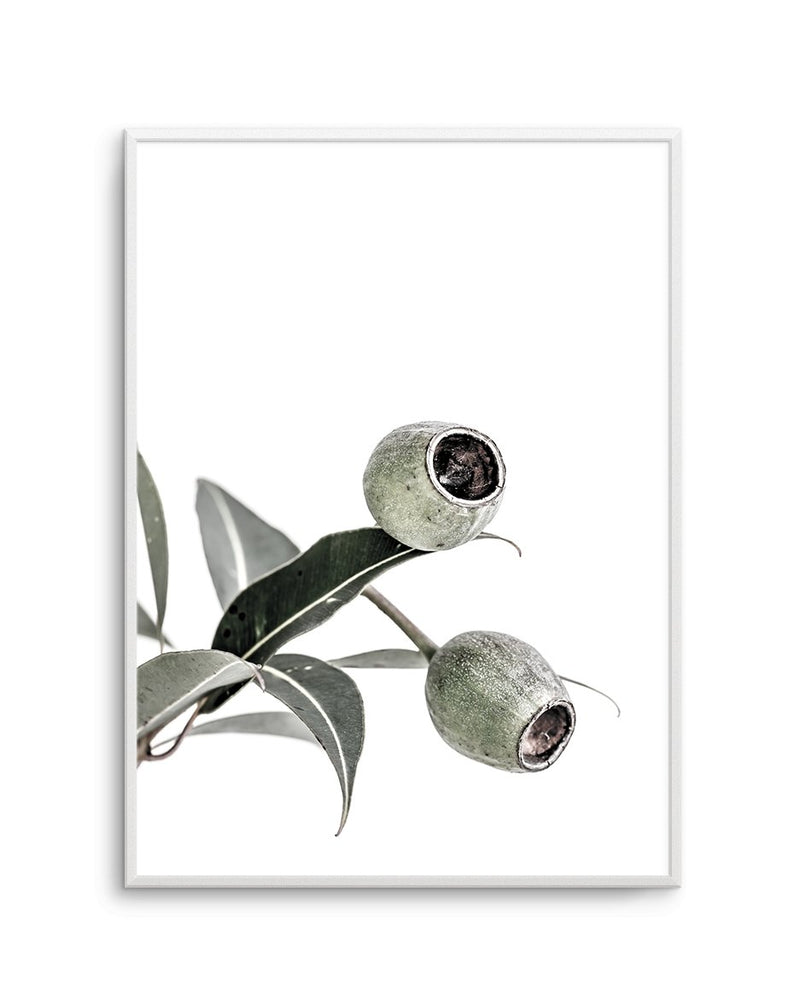 In The Gumtrees No I - Olive et Oriel | Shop Art Prints & Posters Online