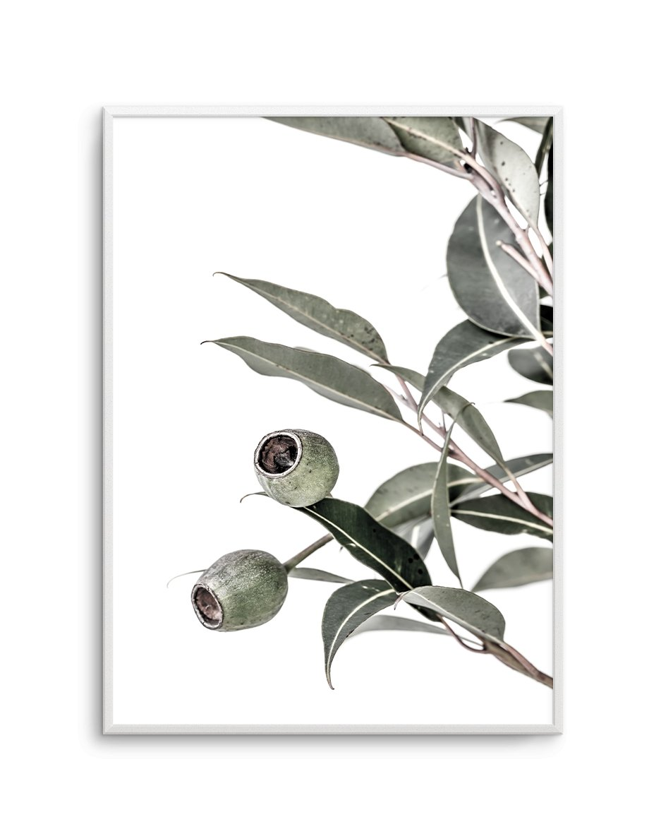 In The Gumtrees No II - Olive et Oriel | Shop Art Prints & Posters Online
