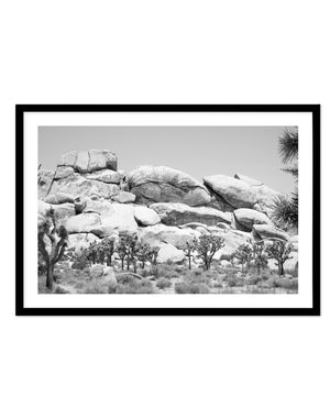 Joshua Tree | B&W | NO 1 - Olive et Oriel | Shop Art Prints & Posters Online