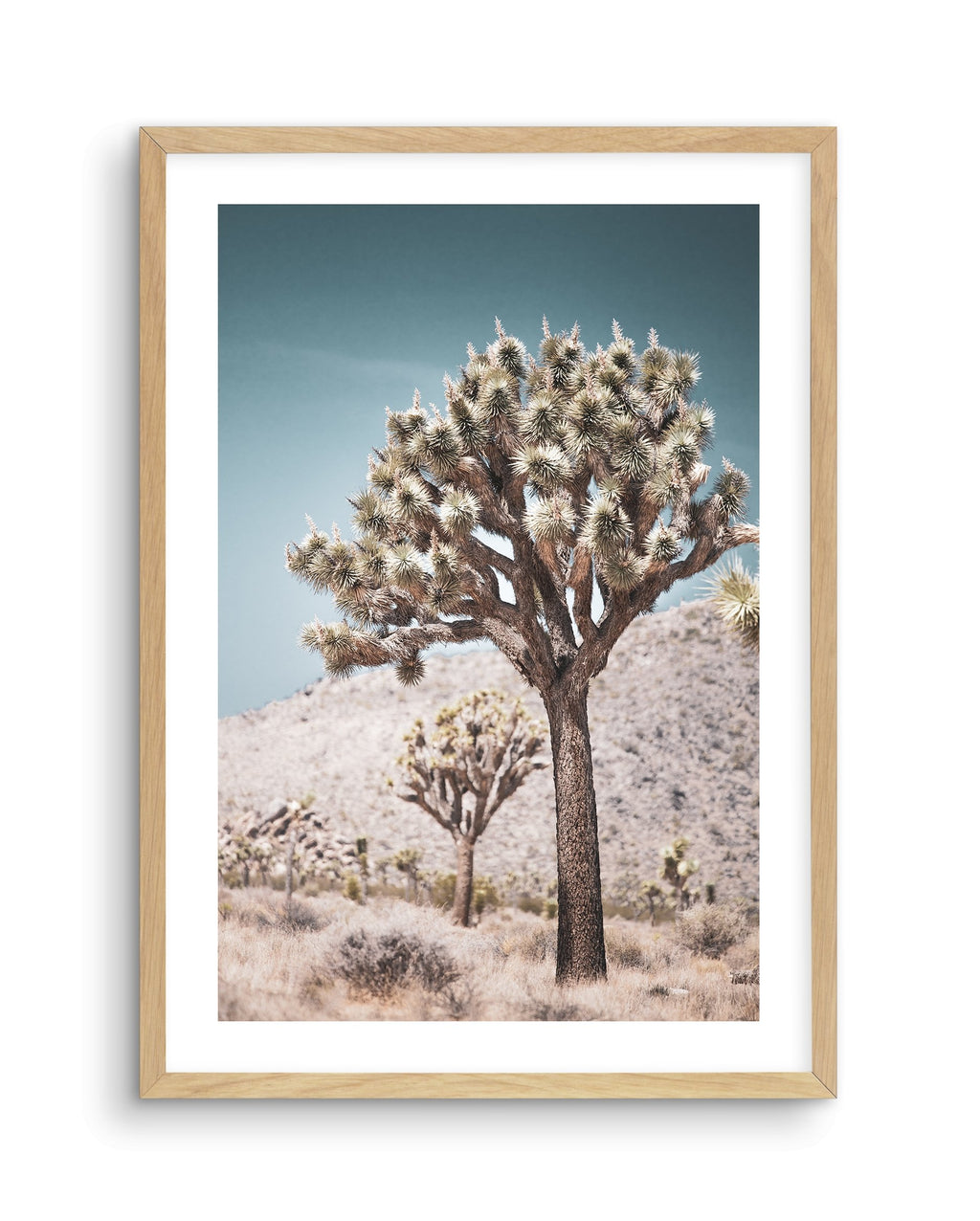 Joshua Tree | SOFT | NO 3 - Olive et Oriel | Shop Art Prints & Posters Online