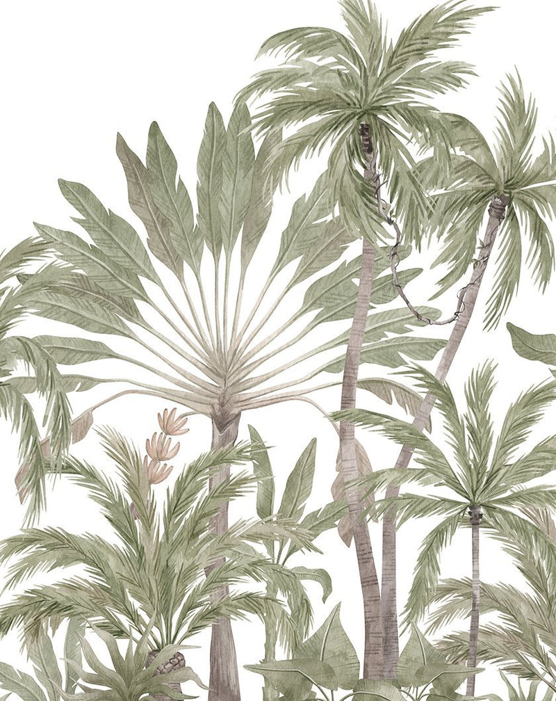 Jungle Palms Wallpaper Mural - Olive et Oriel