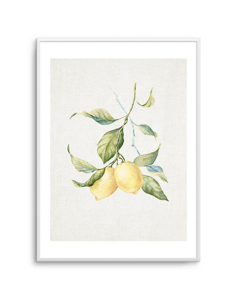 Lemon on Linen #3 - Olive et Oriel