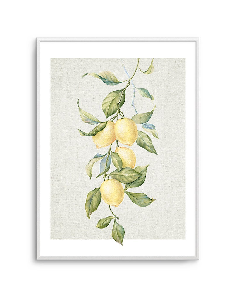 Lemons on Linen #2 - Olive et Oriel