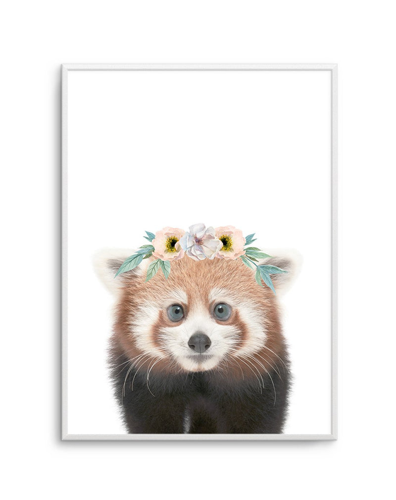 Little Red Panda - Olive et Oriel