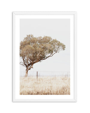 Lost In The Fields - Olive et Oriel | Shop Art Prints & Posters Online