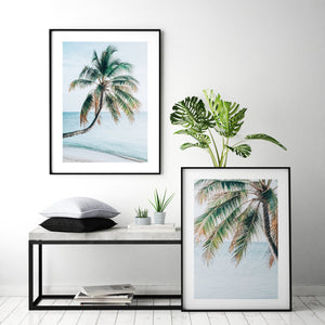 Maldivian Palm No 2 - Olive et Oriel | Shop Art Prints & Posters Online