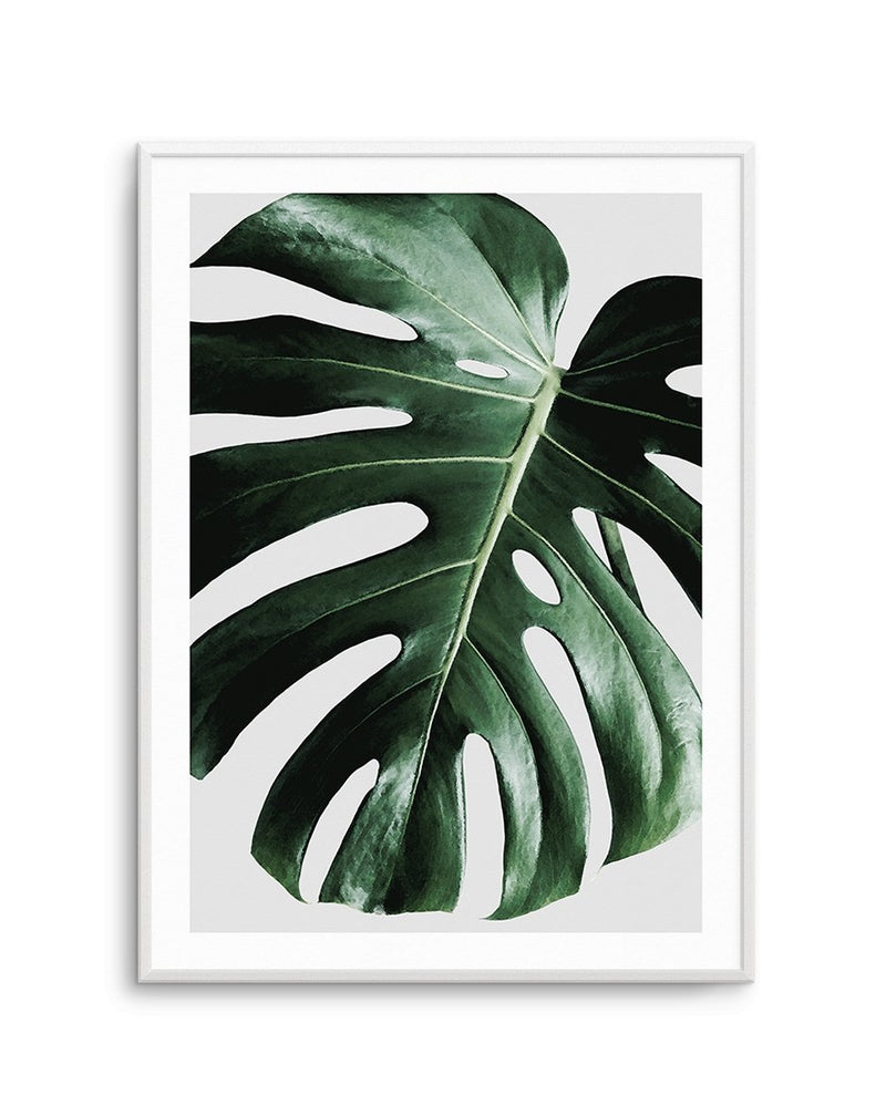 Monstera | On Grey - Olive et Oriel | Shop Art Prints & Posters Online