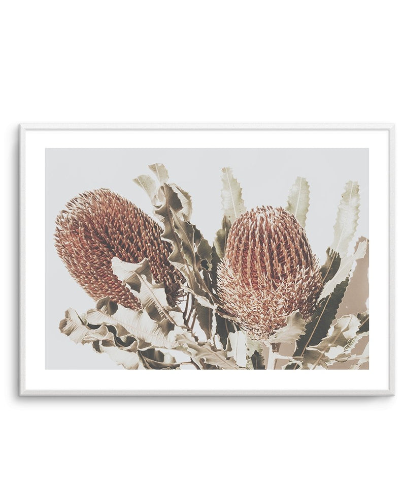 Native Banksia LS - Olive et Oriel | Shop Art Prints & Posters Online