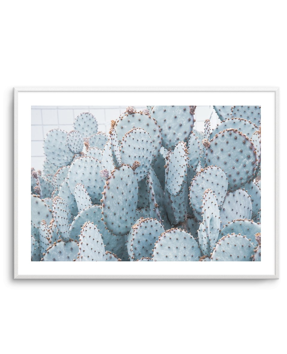 PALE PRICKLY PEAR CACTUS | LS - Olive et Oriel | Shop Art Prints & Posters Online