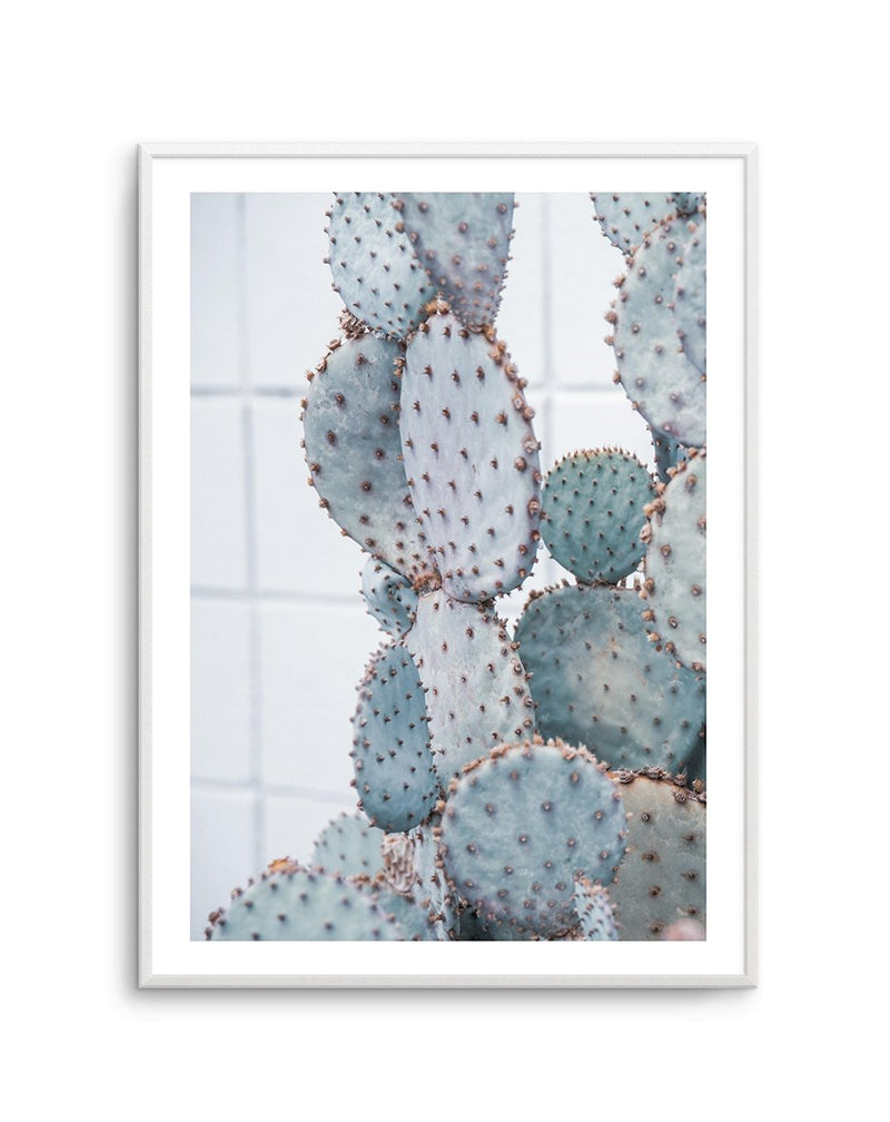 PALE PRICKLY PEAR NO. 1 - Olive et Oriel