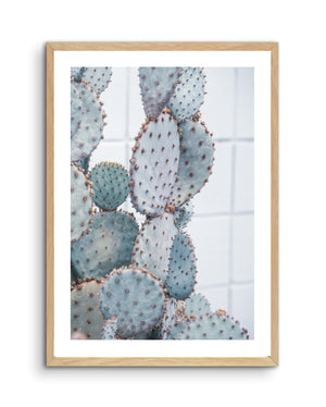 PALE PRICKLY PEAR NO. 2 - Olive et Oriel | Shop Art Prints & Posters Online