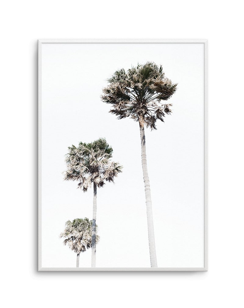Palm Trees - Olive et Oriel | Shop Art Prints & Posters Online