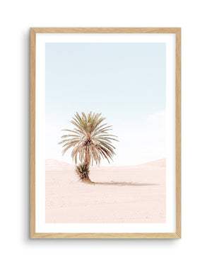Palms of Morocco No I - Olive et Oriel