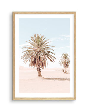Palms of Morocco No II - Olive et Oriel