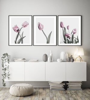 Pink Tulip Illustration No I - Olive et Oriel | Shop Art Prints & Posters Online
