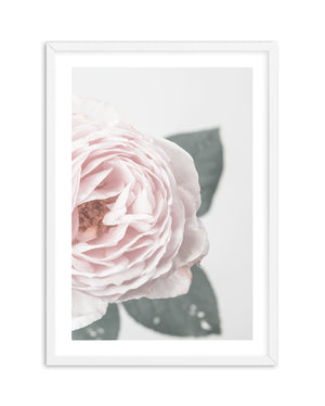 Pretty Little Thing No 1 - Olive et Oriel | Shop Art Prints & Posters Online