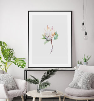 Protea in Watercolour - Olive et Oriel