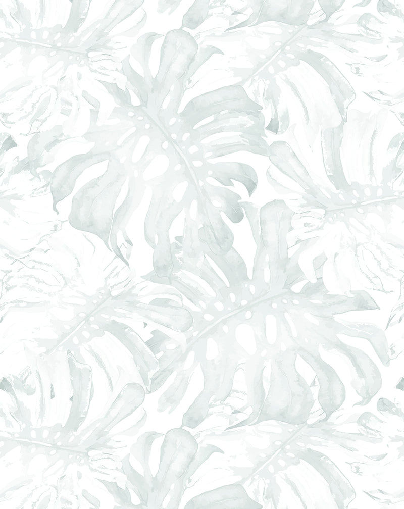 Sage Monstera Wallpaper