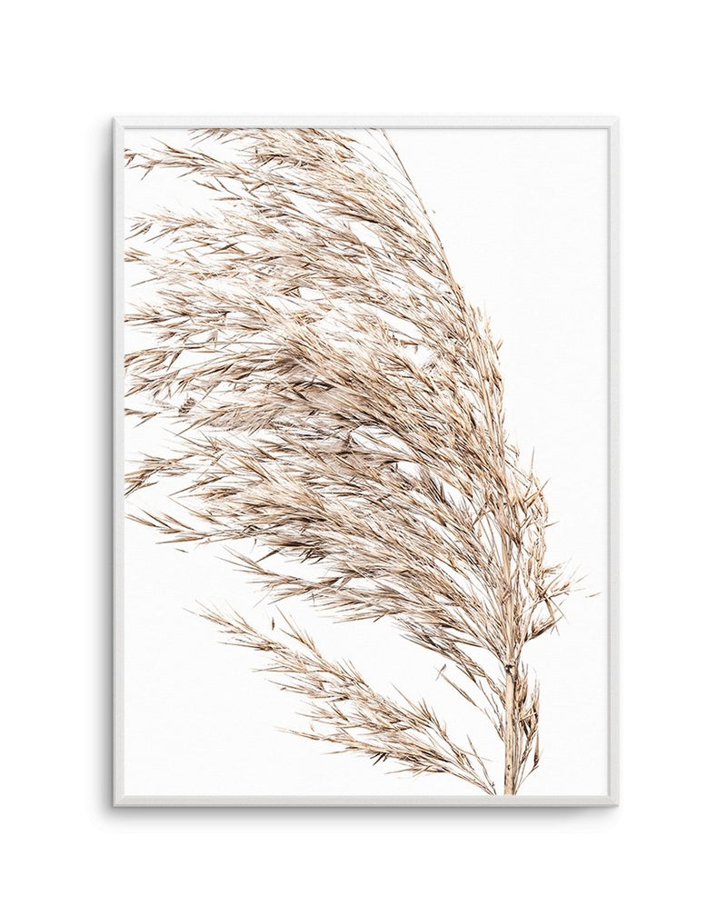 Sea Grass No II - Olive et Oriel | Shop Art Prints & Posters Online