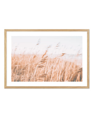 Seagrass In The Wind LS No 1 - Olive et Oriel | Shop Art Prints & Posters Online