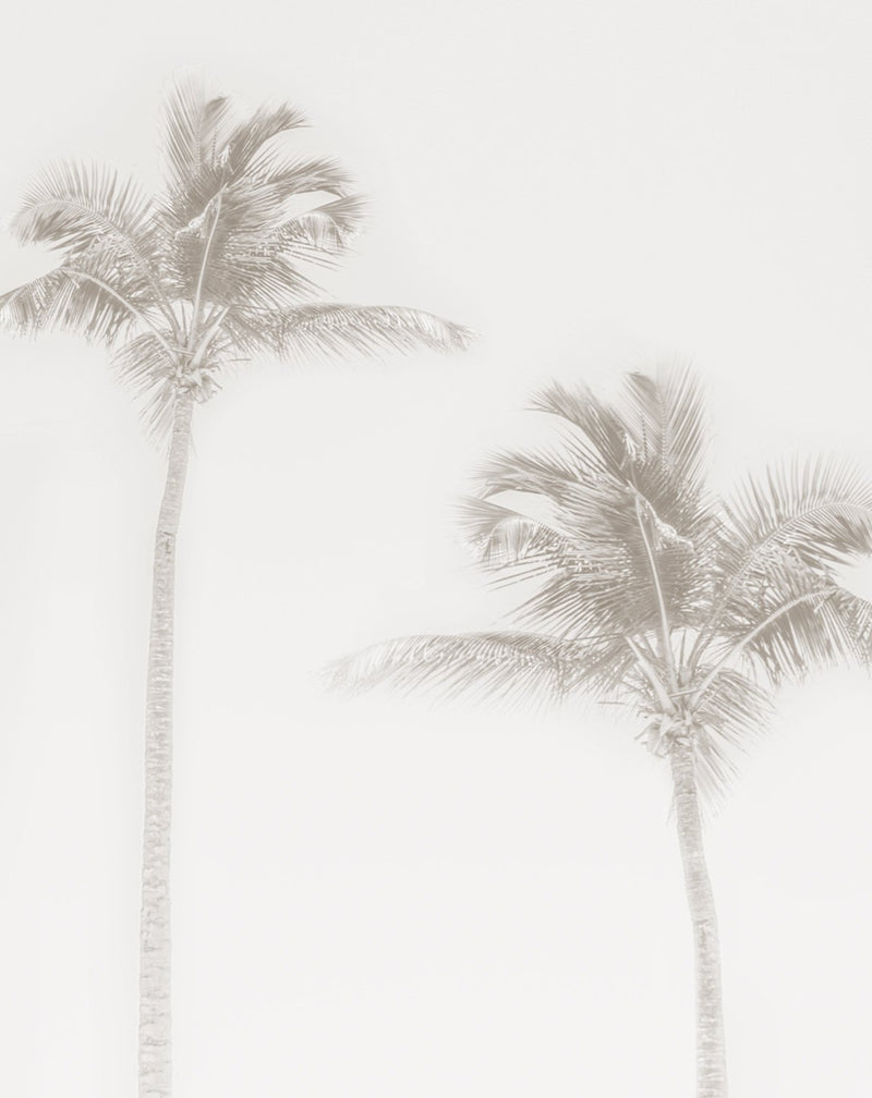 Shady Palms - Faded Wallpaper Mural - Olive et Oriel