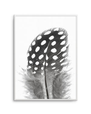 Spotted Feather - Olive et Oriel | Shop Art Prints & Posters Online