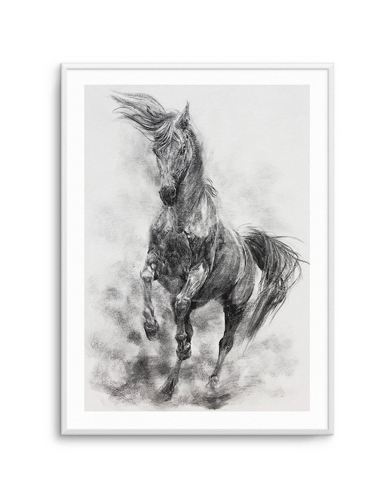 Stallion in Charcoal - Olive et Oriel