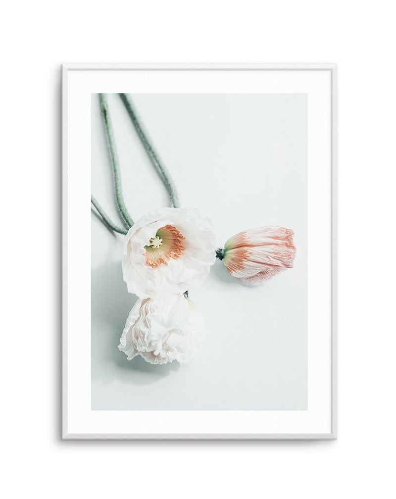 Summer Poppies No 3 - Olive et Oriel | Shop Art Prints & Posters Online