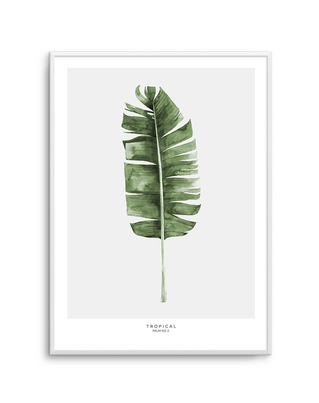 Tropical Palm NO 2 - Olive et Oriel