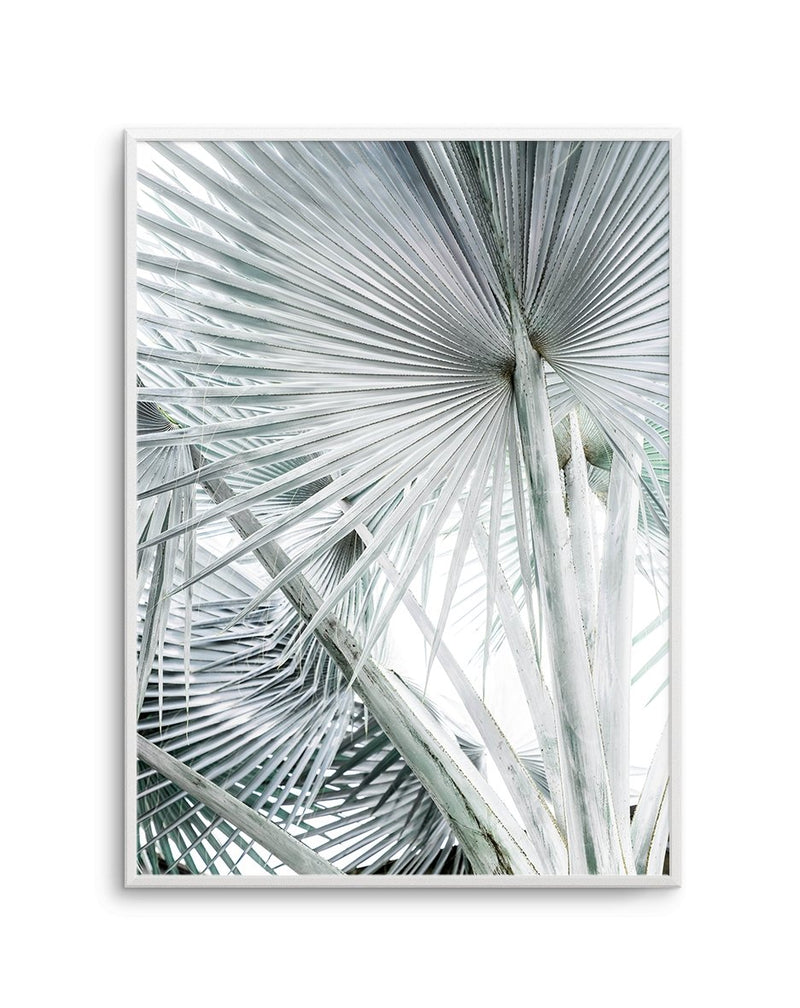 Tropical Palm No. 3 - Olive et Oriel | Shop Art Prints & Posters Online