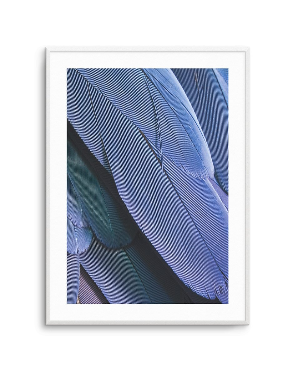 Ultra Violet Feather II - Olive et Oriel | Shop Art Prints & Posters Online