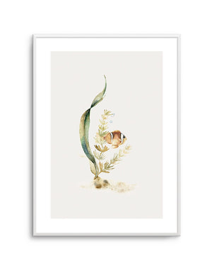 Watercolour Fish - Olive et Oriel