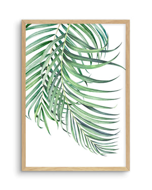 Watercolour Palms No 1 - Olive et Oriel | Shop Art Prints & Posters Online
