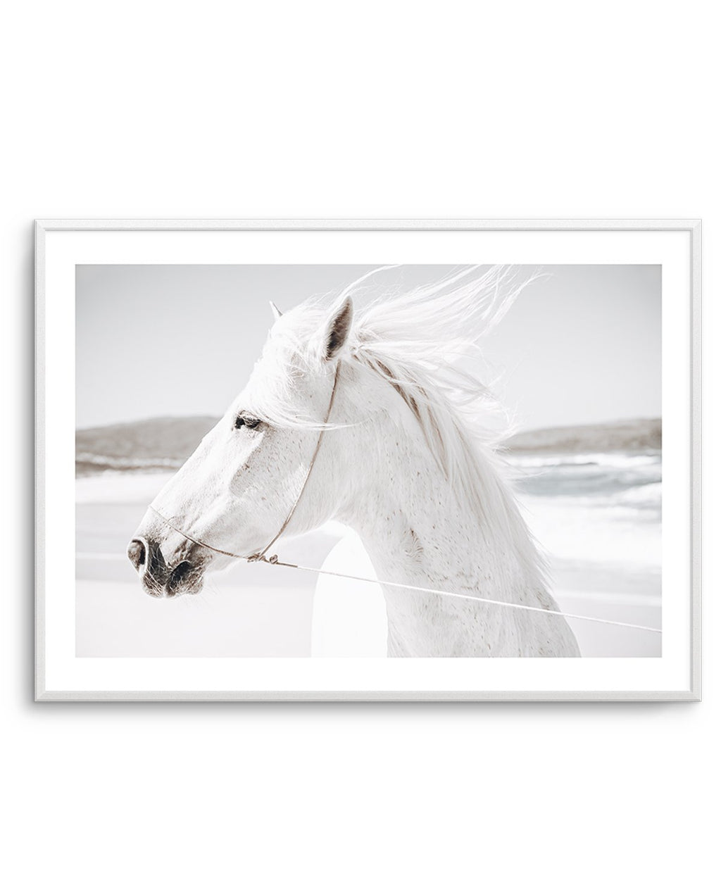 White Horse | Down in Mexico - Olive et Oriel