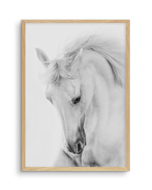 White Horse III - Olive et Oriel