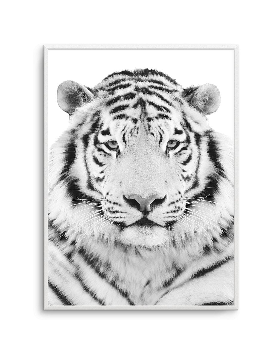 White Tiger - Olive et Oriel | Shop Art Prints & Posters Online