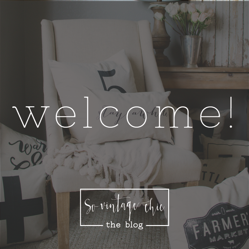 Welcome to the SVC Blog! An Introduction + a Discount Code!