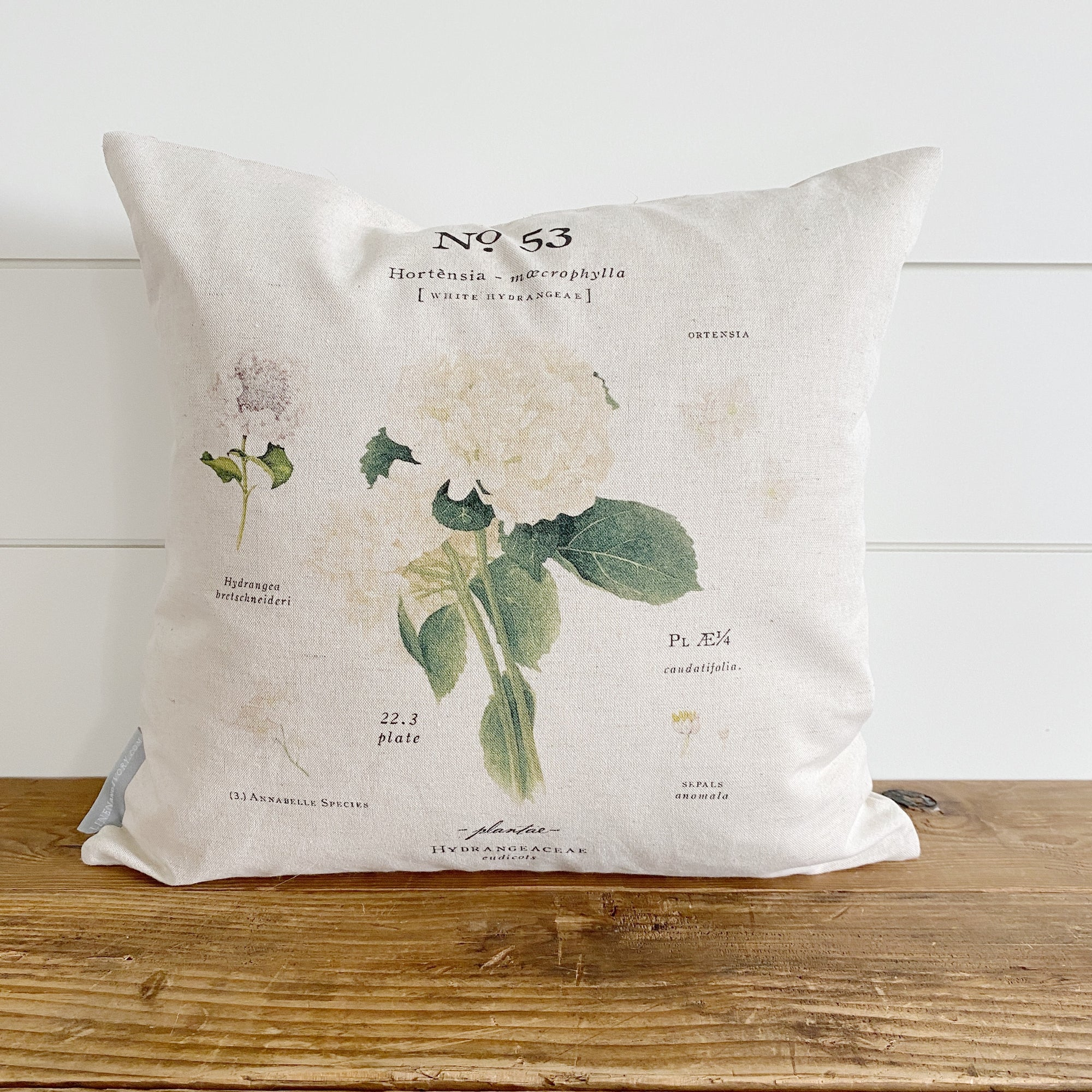 Hydrangea Botanical Pillow Cover (White)